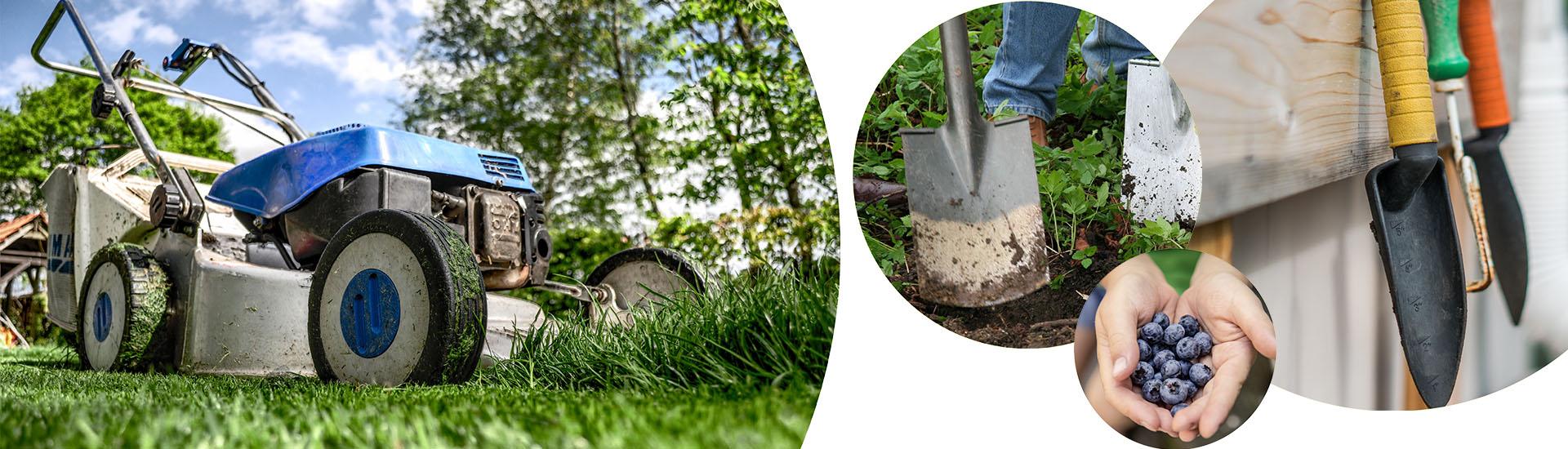 Une tondeuse, une pelle, de quoi appeler un jardinier à domicile